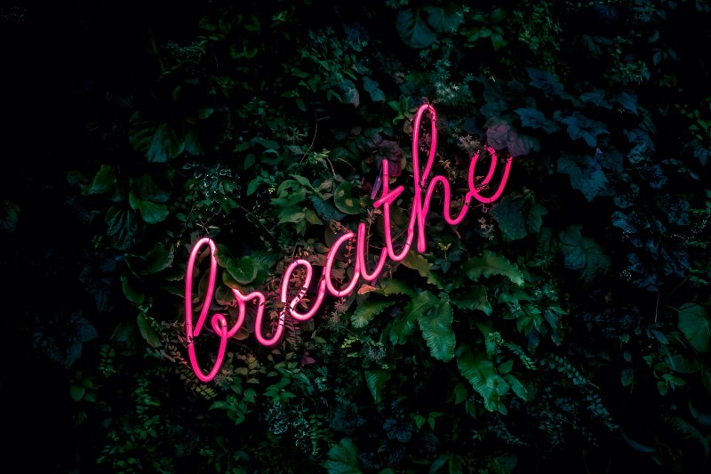 "The word ""breathe"" in neon against a background of green leaves."